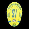 SV Blau-Gelb Mülsen