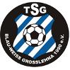 TSG Blau-Weiß Großlehna